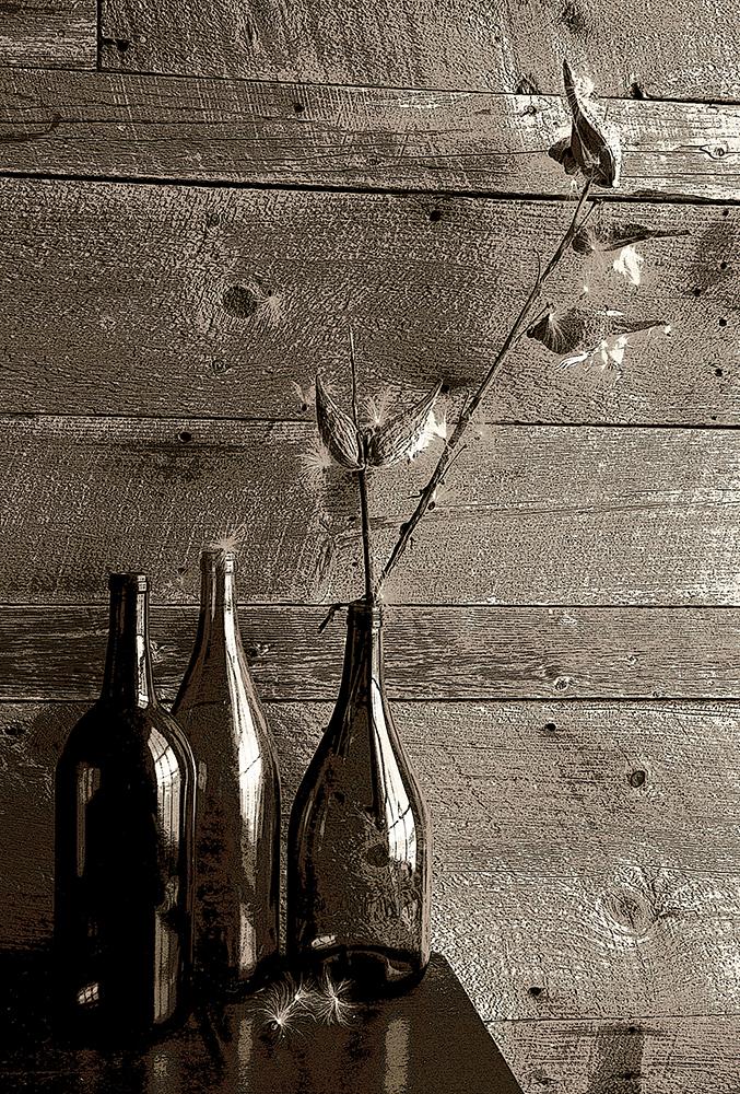 milkweed and bottles